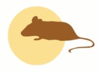 день защиты лабораторных животных